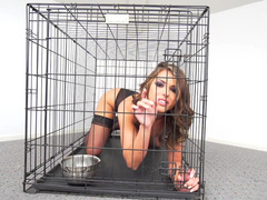 Slutty woman Adriana Chechik wants to get out and entices tamer sucking dildo
